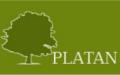 Platan Phu Krzysztof Łopaciuk