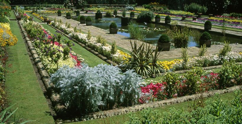 Jak wybrać projektanta ogrodu? Sprawdź!