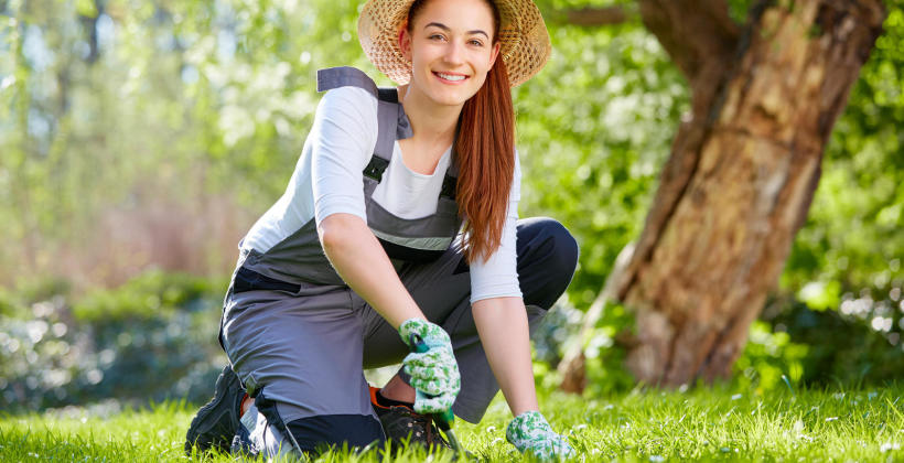 Czym wyróżnia się dobry dystrybutor sprzętów ogrodniczych?
