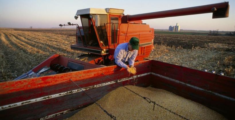 Wynajem suszarni przewoźnych do ziarna zbóż i kukurydzy sposobem na pomoc w żniwach