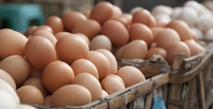 Jak klasyfikujemy jajka kurze?
