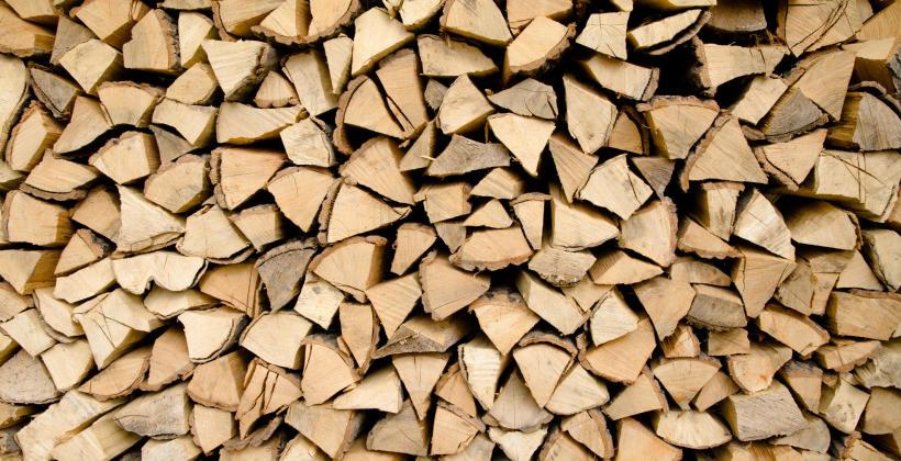 Na co warto zwrócić uwagę zakupując drewno kominkowe?