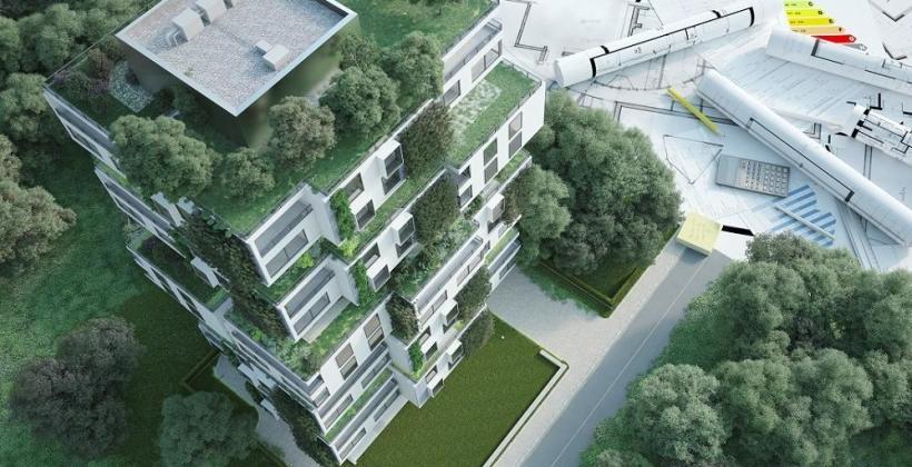Zasady projektowania publicznych terenów zieleni