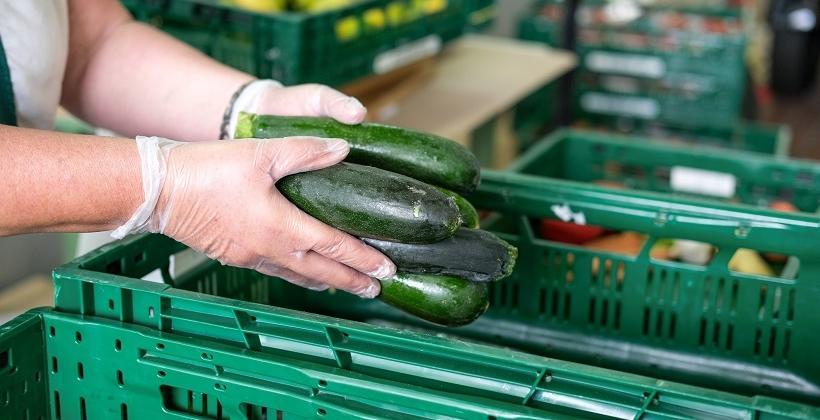 Jakie skrzynki nadają się do przechowywania owoców i warzyw?