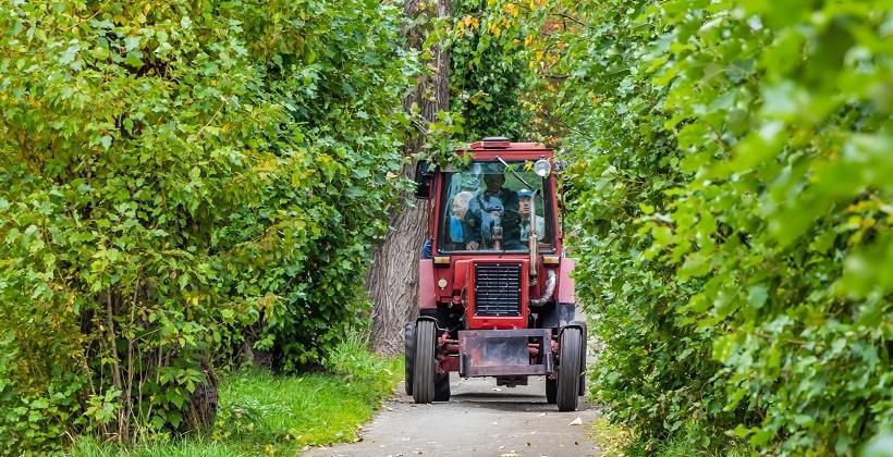 Agrokid, czyli traktor w wersji mini