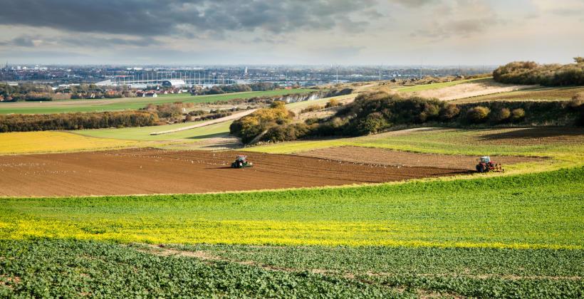 Wozy paszowe, czyli ułatwienie pracy rolnika