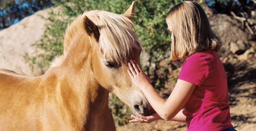 Jak wygląda przeciętny dzień na obozie jeździeckim dla młodzieży?
