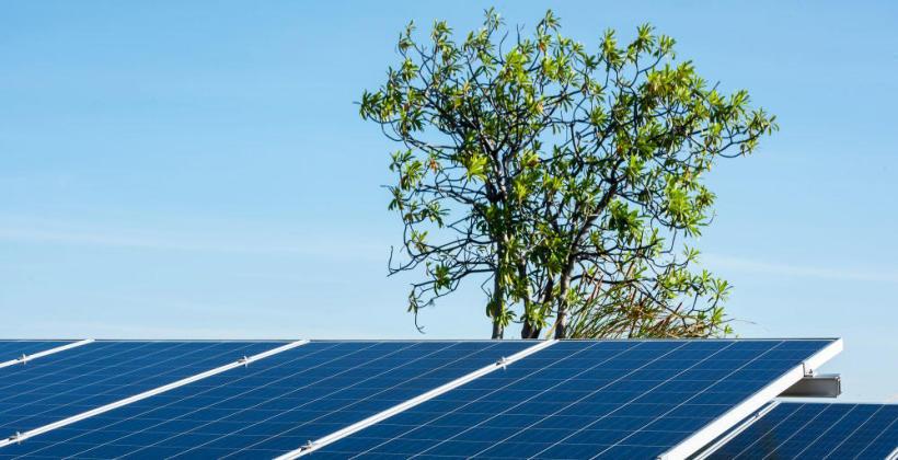 Technologia fotowoltaiczna – dbając o niezależność energetyczną obiektów