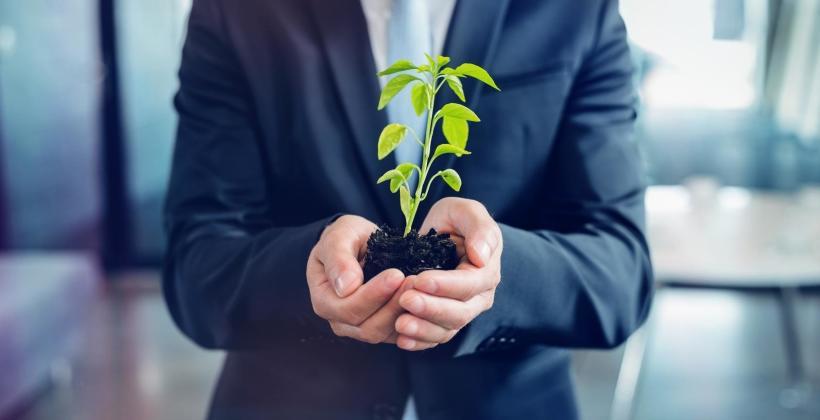 Jak wprowadzić ekologiczne rozwiązania w biurze?