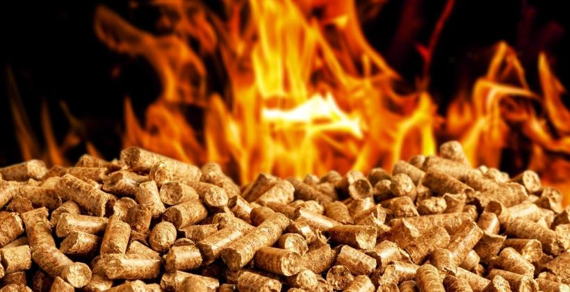 Biomasa rozwojowy rynek inwestycyjny paliw alternatywnych