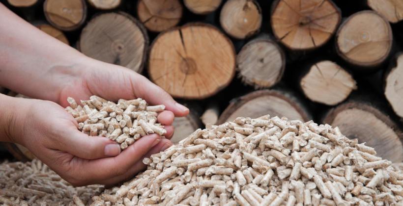 Czym jest pellet i jakie ma zalety?