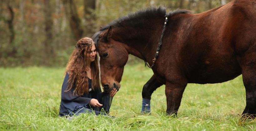 Jak przygotować się do nauki jazdy konnej?
