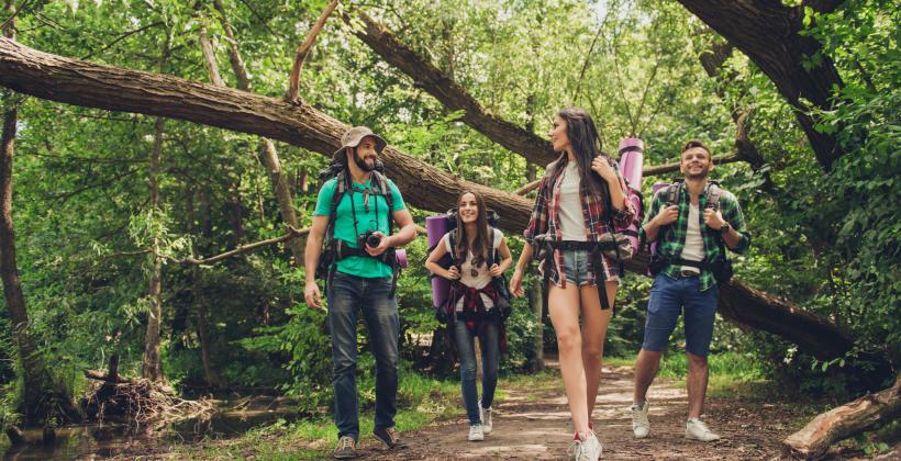 5 zalet, jakie mogą dać wyprawy leśne i kontakt z naturą