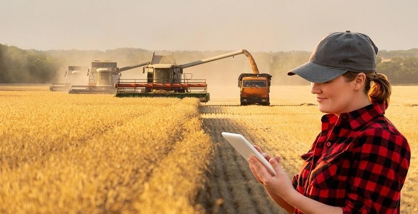 Nowy czy używany - jaki ciągnik rolniczy wybrać?