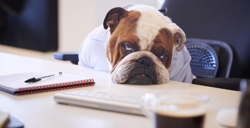 7 rad na Blue Monday. Jak przeżyć ponury dzień w pracy?