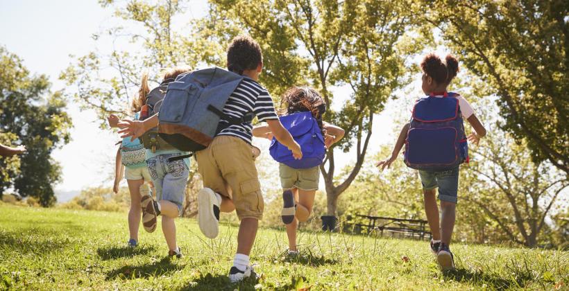 Zielona szkoła – dlaczego warto zapisać swoje dziecko na taki wyjazd?