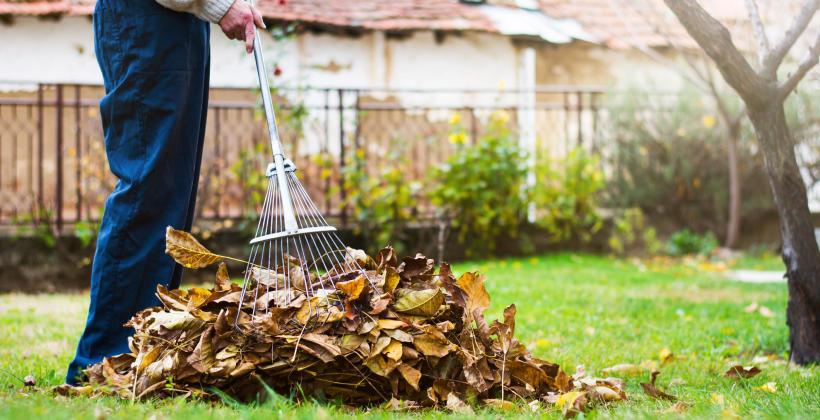 Osiedla mieszkaniowe – jak zadbać o czystość na zewnątrz?