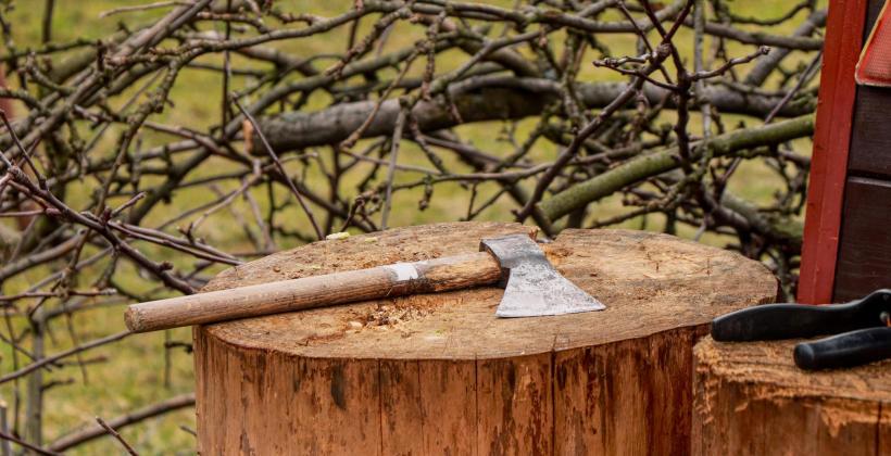 Jakie maszyny do rozdrabiania drewna wybrać?