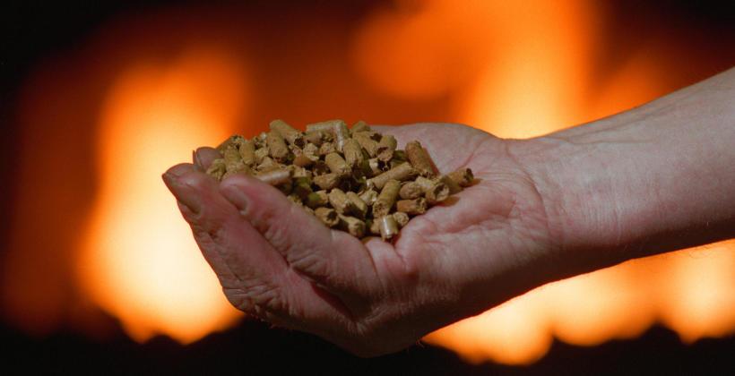 W jaki sposób można wykorzystać pellet?
