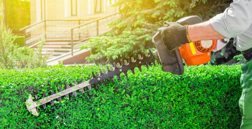 Jakie maszyny i narzędzia przydadzą się w naszym ogrodzie?