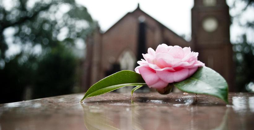 Na czym polega praca zakładu pogrzebowego?