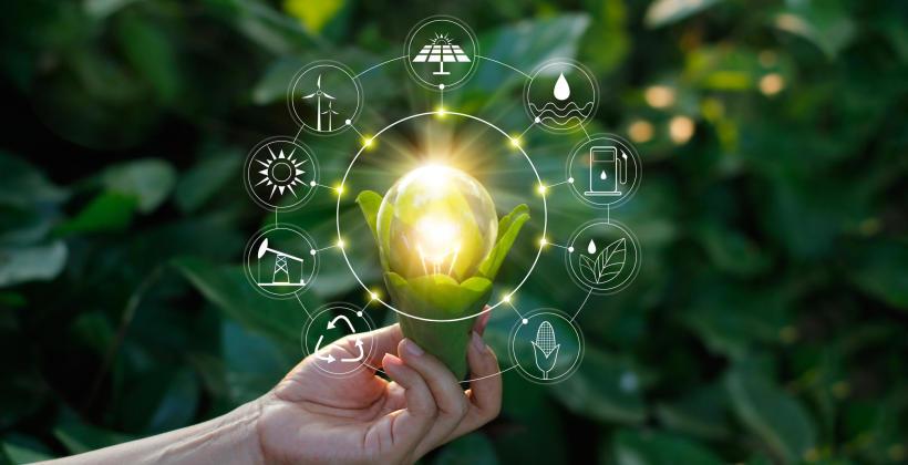 Ważne informacje na temat decyzji środowiskowych