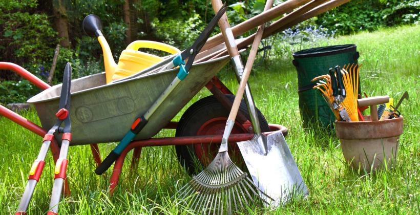 Kiedy warto skorzystać z wypożyczalni sprzętu ogrodniczego?