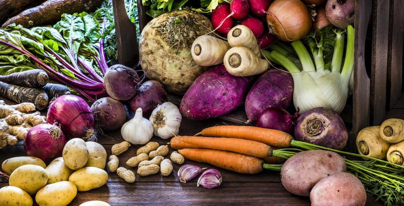 Wszystko, co warto wiedzieć o warzywach korzeniowych