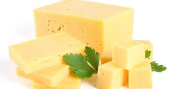 Ser w bloku idealnym rozwiązaniem dla branży gastronomicznej