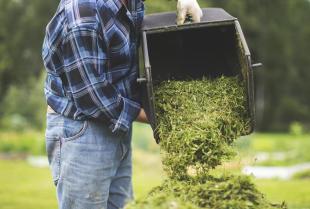 Co zrobić ze skoszoną trawą i opadającymi liśćmi na działce?