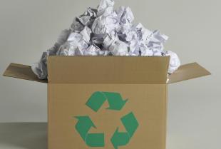 Recykling - co warto wiedzieć?