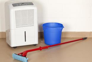 Jakie zalety mają osuszacze powietrza?