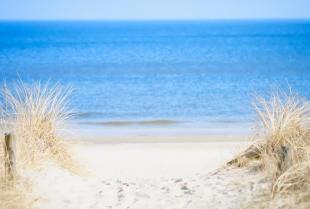 Dlaczego warto wyjechać na wczasy nad morze?
