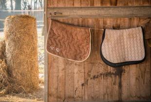 Projektowanie stadniny koni