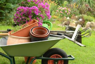 Lider w produkcji doniczek i innych akcesoriów ogrodniczych