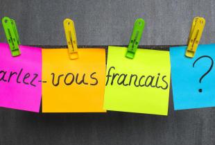Czy warto podjąć się nauki nowego języka?