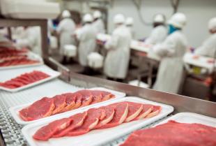 Szkolenia dla przemysłu spożywczego – co proponują licencjonowani trenerzy?