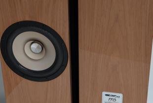 Jak wybrać głośniki do salonu?