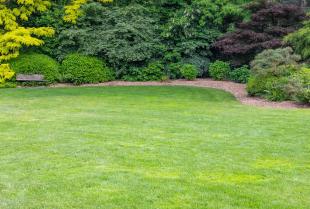 Zakładamy ogród – 4 kroki, o których nie możesz zapomnieć.