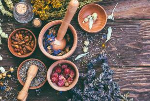 Szerokie zastosowanie suszonych ziół, warzyw i owoców