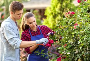 Czynności, które pomogą utrzymać ogród