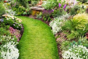 Jak dbać o ogród?
