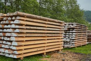 Co warto wiedzieć przed kupnem drewna z tartaku?