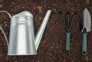 Jaki sprzęt ogrodniczy warto mieć w swoim domu?