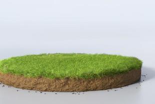 Ziemia ogrodowa – czym powinna się wyróżniać?