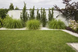Jak zaprojektować ogród?
