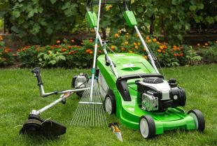 Które narzędzia warto wypożyczyć na jesienne porządki w ogrodzie?