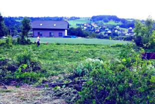 Jak pielęgnować duże trawniki i łąki?