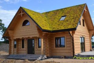 Dlaczego dachy zielone są przyjazne dla środowiska?