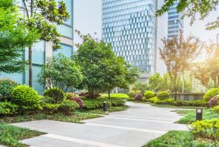 Funkcje zdrowotne i społeczne ogrodu